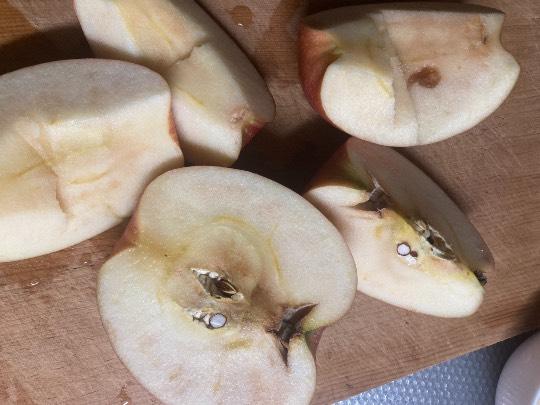 りんご こる パンチが効いた酸味!ニュージーランドのりんご「コル」をご紹介します