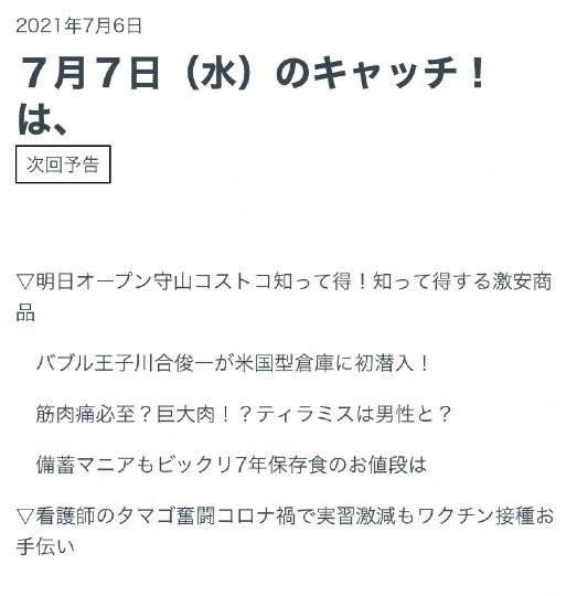市 川合 俊一 在住 碧南 高坂 美歩さんの現在乗っているキャンピングカーは?